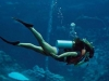 andaman-scuba-diving-1