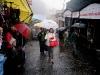 darjeeling_drizzling.jpg