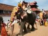 thrippunithura-elephant-end-of-pooram-2_crop.jpg