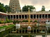 sri-meenakshi-sundareswarar-temple