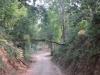 raod-internal-of-jim-corbett-national-park_0