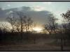 sunrise-corbett-national-p.jpg