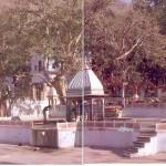 bhartrihari