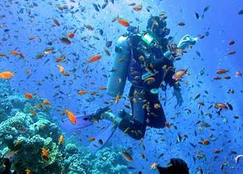 Under Water Dive